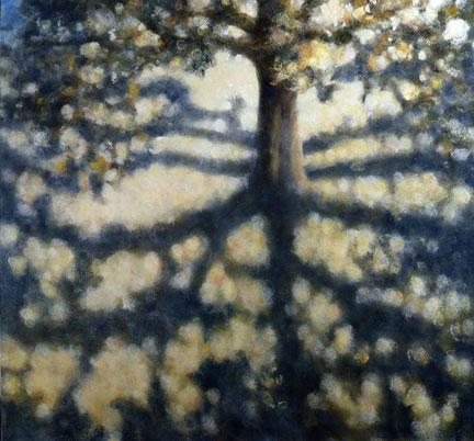 TreewithShadows.08